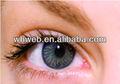 círculo de la moda de la lente verde convencional de lentes de contacto color baratos los contactos
