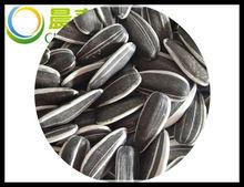 sanck rich nutrition edible white/black sunflower seeds 5009,5135