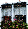 Top-selling decorative wrought iron window grille design