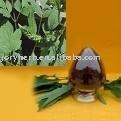 Black Cohosh P.E-plant extract