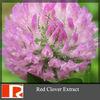 Isoflavones Red Clover Extract ;Biochanin A;Formononetin;Daidzein;Genistein