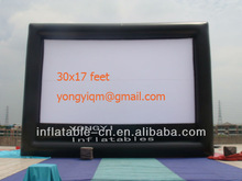 30x17 Outdoor Free Standing Inflatable Movie Screen