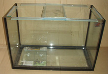 High Qualty And Clear Aquarium For Sale