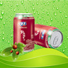 310ml Canned Wild jujube extract beverage