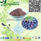 Natural juice powder addtive blueberry juice powder/blueberry