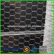 small wire bird cages In Rigid Quality Procedures With Best Price(Manufacturer)