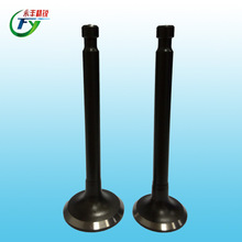 cd70 motorcycle parts for cd70 motorcycle engine valve