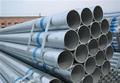 Mejor- venta de inmersión en caliente de tubos de acero galvanizado