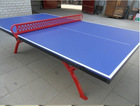Outdoor Butterfly Table Tennis JN-0804