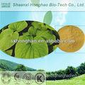 Usine certifiée gmp approvisionnement kavalactones 30% hplc kava root extrait