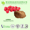 100% Natural Hot Sale Hawthorn Fruit P.E.5%~90%