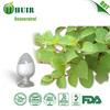 Manufacture supply resveratrol/polygonum cuspidatum/about resveratrol with best price