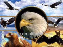 Venda quente flying eagle animais 3d imagem com PET Lenticular