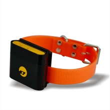 Waterproof Animal Tracking Unit/GPS Pet Tracker for Cow/Cattle/Horse/Dog/Wildlife Animal with Collar& Long Battery Life