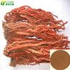 Supply radix salviae miltiorrhizae extract Tanshinone IIA 0.4% with high quality
