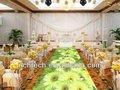 O novo casamento decor é uma tendência da moda de casamento na indústria, fazer seu casamento mais impressionante