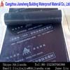 APP/SBS roofing material waterproof material pe membrane