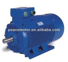 Variable speed brushless dc motor