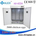 Buena calidad y precio grande fuente de alimentación incubadora 4224 huevos de pollo de vacunas contra caliente en africana