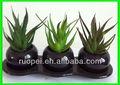 Barato verde Mini Artificial plantas suculentas con la