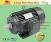 Y Series Three Phase Electric AC Motor