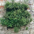 vertical gardening decorative wall hanging planters and flower pots