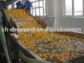 frutta lavatrice