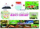 Magic shrimp.Sea spirit toy.Magic soil