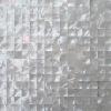 fashionable whitelip shell mosaic tile, seashell tile mosaics
