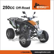 ATV Dune Buggy 250CC