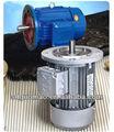 La série y2 trois - à induction triphasé ac moteurs à engrenage électrique