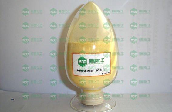 Fungicida curativo protector excelente Azoxystrobin el 95% TC, fungicida de los graminis del Erysiphe