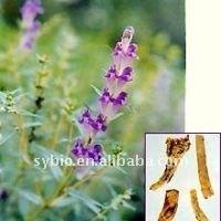 Red Clover P.E./Trifolium pretense L./Isoflavones CAS No: 977150-97-2