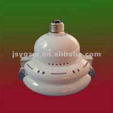 Enlam magnetic induction light bulb