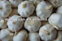 super jinxiang pure white fresh garlic 5.0-7.0cm