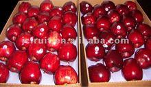 Red apple fresh fruit