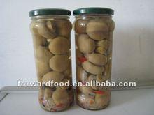 580ml marinated choice grade mushroom whole in glass jar