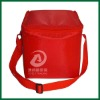 disposable cooler bag for frozen food