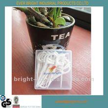 2013 Fashionable Plastic Dental Floss Picks Toothpick
