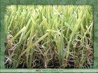 Outdoor Artificial Synthetic Grass Carpet for Playground, Park, Garden