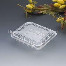 Plastic Fruit Container
