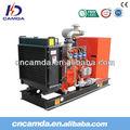 30kw generatore di gas/gasnaturale generatore/metano generatore alimentato a gas