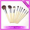 cosmetic brush free makeup