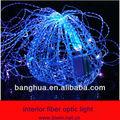 Interior de la fibra óptica luz