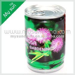 mini plant Garden/home decoration,mini metal flower pot
