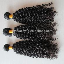 Wholesale AAAAAA Superior quality brazilian virgin afro kinky human hair