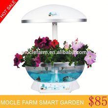 Cast iron flower pot
