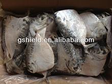 De pêche 150 - 200 g/pcs entiers congelés lune ronde poissons