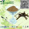 buy kava wholesale kavalactones extract /natural kavalactone/kava kava root extract 30%