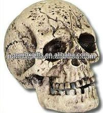 HALLOWEEN HARD RESIN HUMAN SKULL CRANIUM HORROR PROP DECORATION